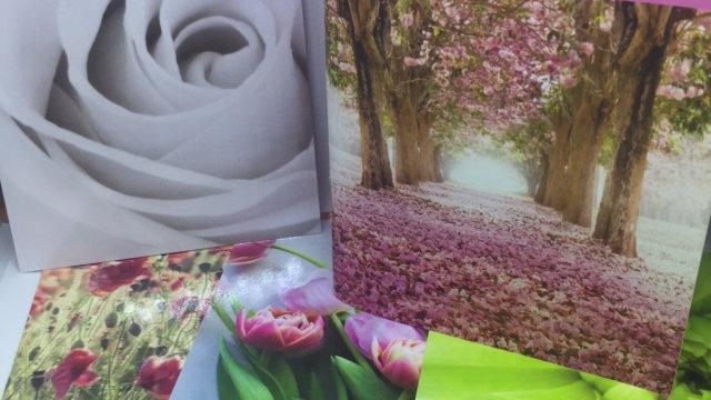 Flourish Emotional Wellbeing Cards