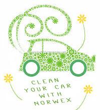 Car Wash Mitt