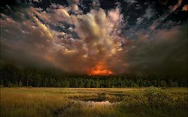 forest-fire-2697.jpg