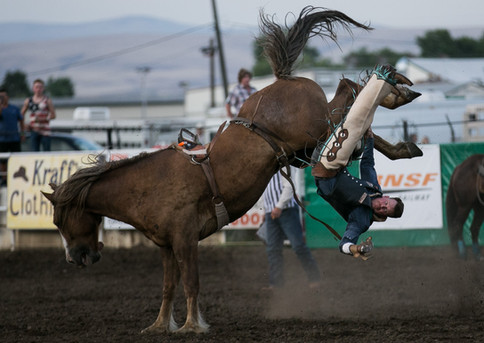 A rider is thrown at the 85th annual Toppenish PRCA Rodeo Friday, July 7, 2019, at the Brost Arena in Toppenish, Wash.