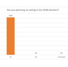 Are you planning on voting in the 2020 election?