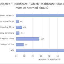 "If you selected ""Healthcare,"" which Healthcare issue are you most concerned about?"