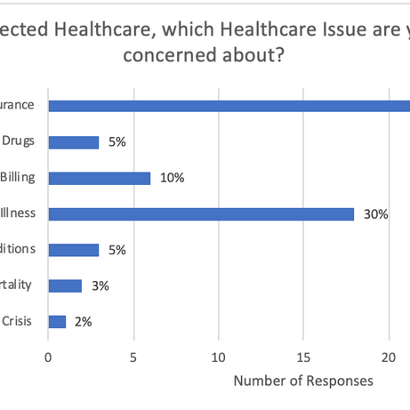 If you selected Healthcare, which Healthcare Issue are you most concerned about?