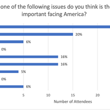 Which of the following issues do you think is...