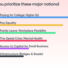 How would you prioritize these major national issues?