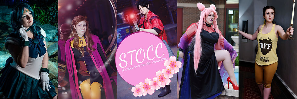 STOCC banner.jpg
