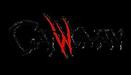 Catwoman_Vol_4_Logo.png