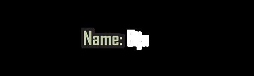 NAME - Bija.png