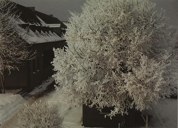 Landsberg AB Snowy Scene From HQ Bldg Wi