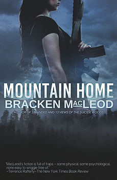Mountain Home cover with blurb.jpg