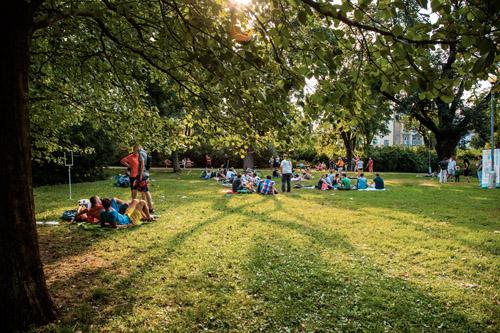 Piknik COWO-003(C) Vit Madr.jpg