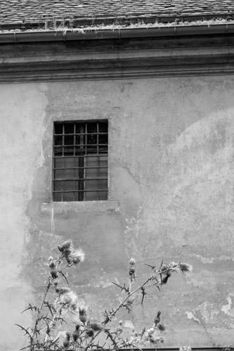 kaznice-039- (C) Vit Madr.jpg