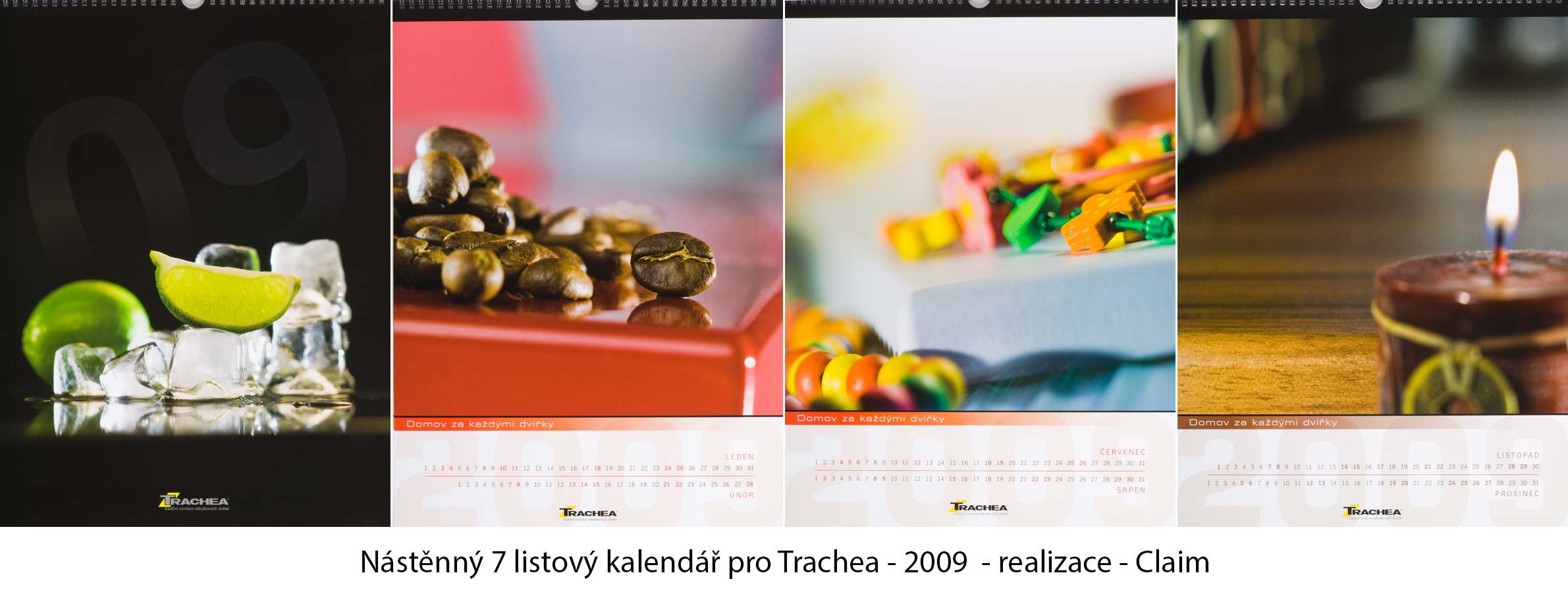 2009-Trachea.jpg