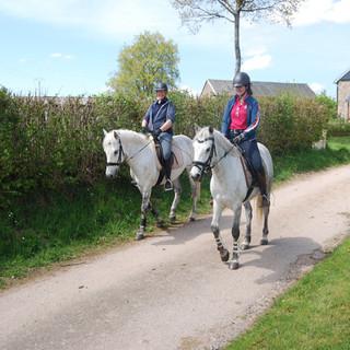 18 paardrij rit