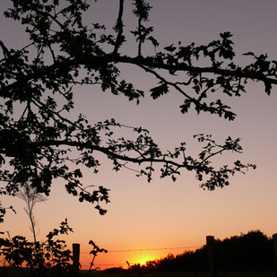 24 zonsondergang