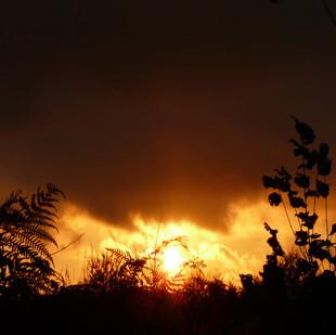 23 zonsondergang