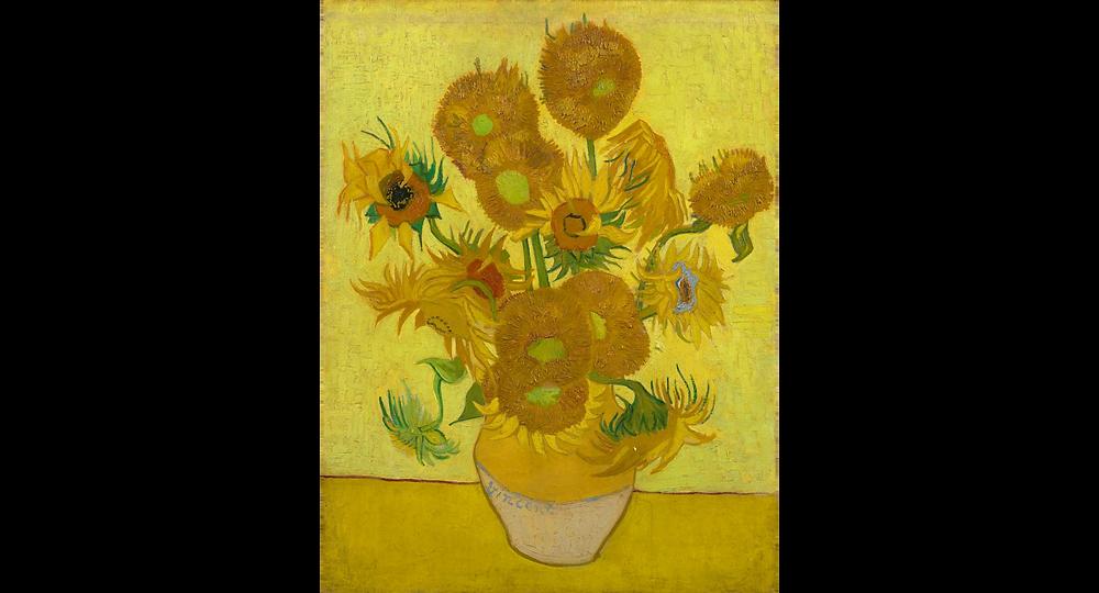 Sunflowers  Vincent van Gogh, January 1889