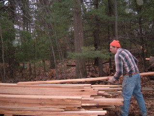 Staying safe: The top four risks in woodworking