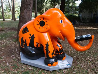 Elephant Parade por Amazon