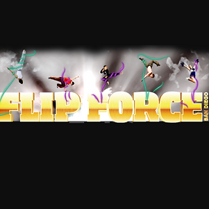 flip force_edited.png