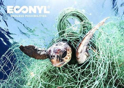 ECONYL%25C2%25AE_turtle_A6_edited_edited