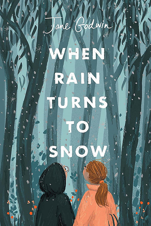 When Rain Turns to Snow Jane Godwin