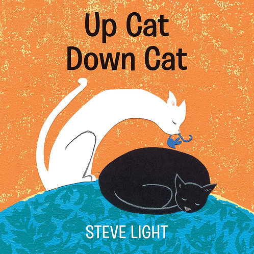 Up Cat Down Cat by Steve Light