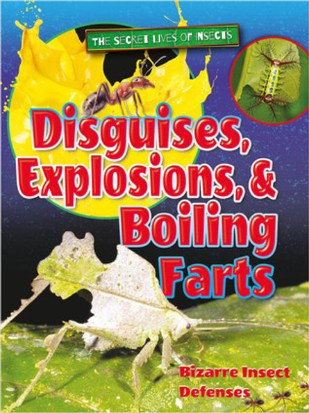 Disguises, Explosions and Boiling Farts by Ruth Owen