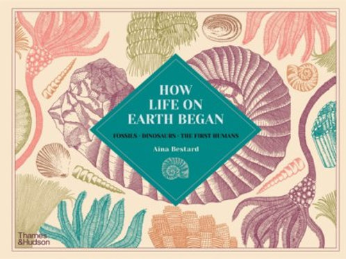 How Life On Earth Began: Fossils, Dinosaurs, the First Humans by Aina Bestard
