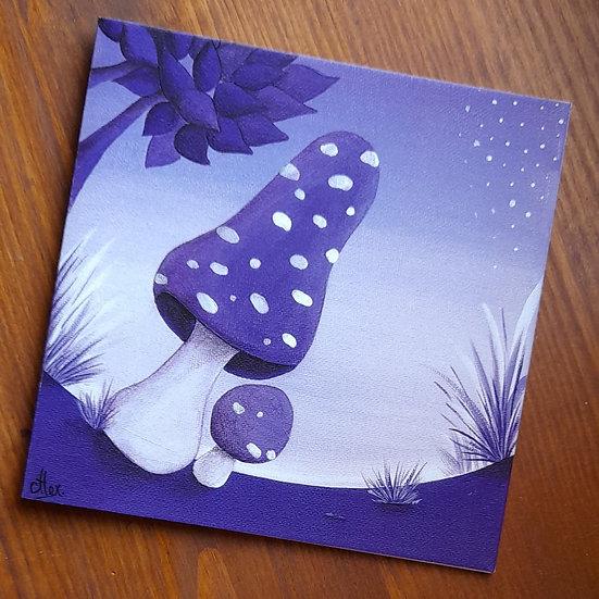Carte Postale - Sous bois