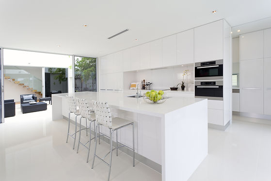Luxurious kitchen with stainless steel a