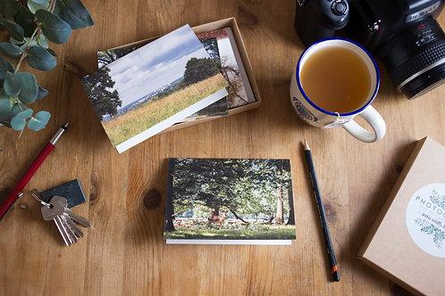 Windsor Great Park II Greeting Card Gift Box