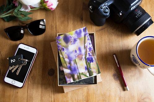 Spring to Summer Botanical Greeting Card Gift Box