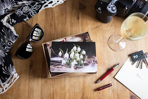 Autumn to Winter Botanical Greeting Card Gift Box