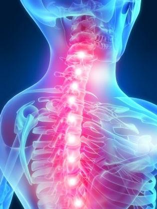 Chronic_Musculoskeletal_Pain-2.jpg