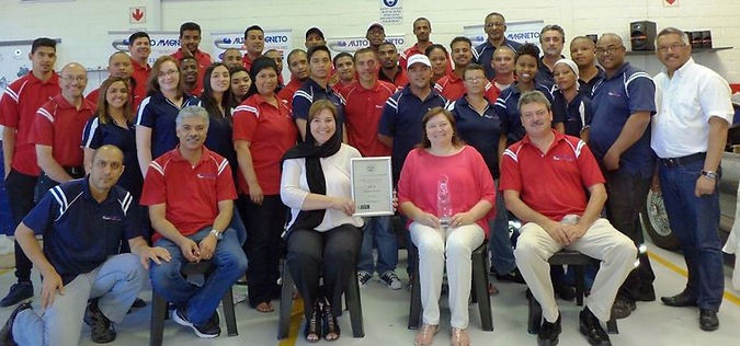 Auto Magnetos team of excellence