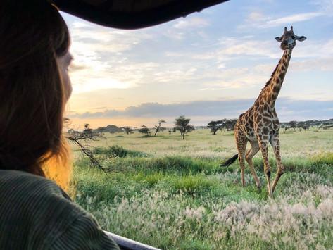 Safari in Tansania – Auf den Spuren der Big 5