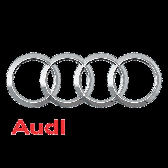 Audi-Logo Window Tinting Hall of Fame De
