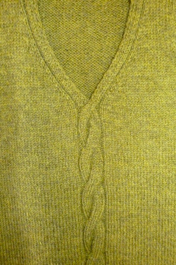 Ryan's vest