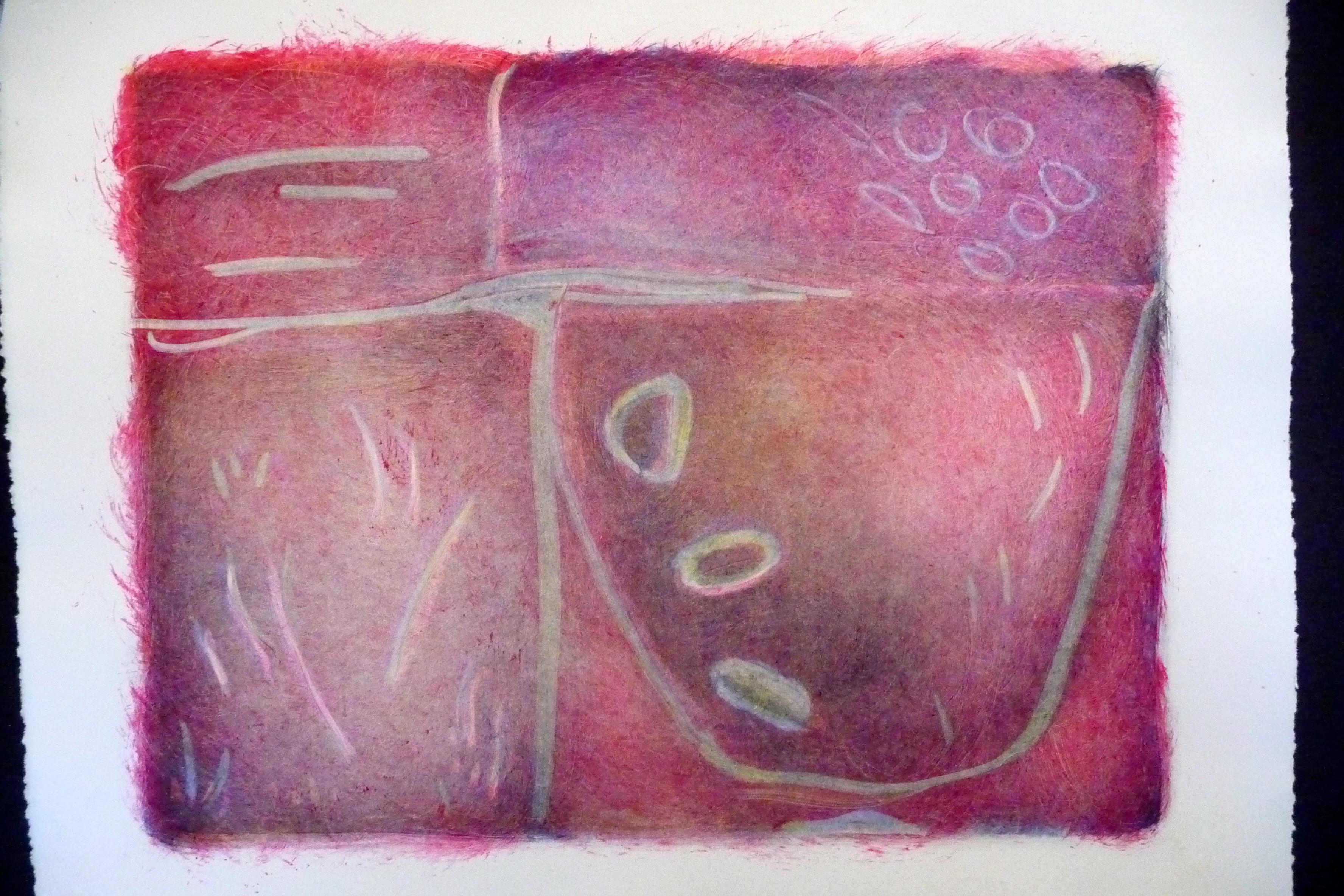 fuchsia basin mono print