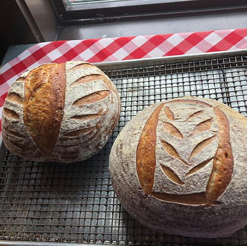 Experimenting with scoring. #sourdough #