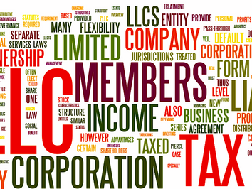Limited Liability Company(유한회사)