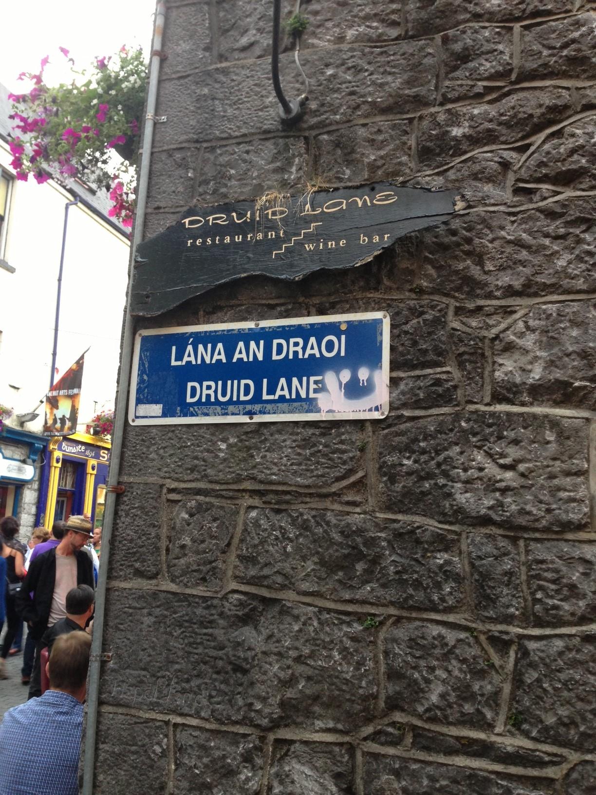 Druid Lane - Dublin