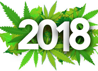 2018: A Year in Review for Marijuana Policy