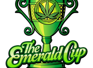 Emerald Cup Award Winning Products!