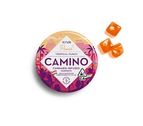 Camino - Pride Tropical Punch (100mg THC)