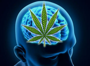 How Cannabis Oil Can Help Your Loved Ones with Alzheimer's & Dementia