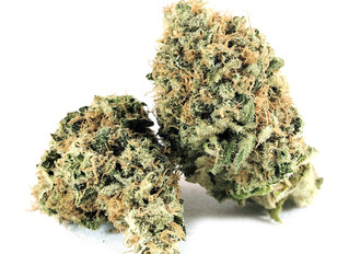 What's in a Strain Name? A Closer Look at the Indica-Sativa Divide