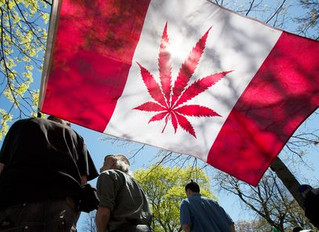Canadian Cannabis 'Eh?