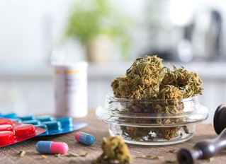 MMJ Patients Reduce Pharmaceutical Use With Cannabis Use